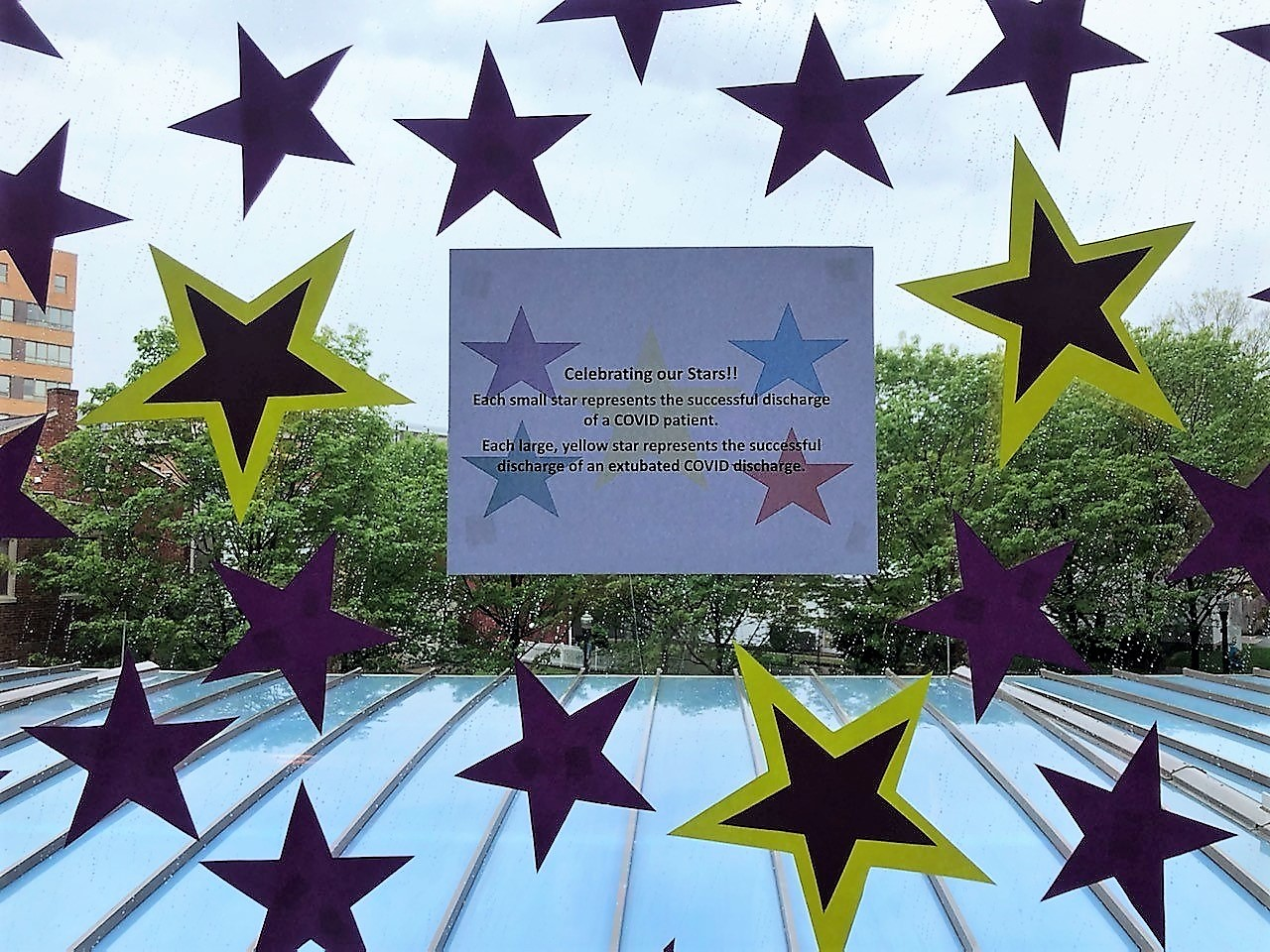 Stars representing recovered Covid-19 inpatients adorn a window at Lancaster General Hospital. Yellow stars denote patients who were intubated. (Source: LGH)