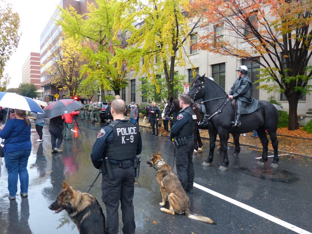 Members of the Lancaster city police K-9 and mounted units await retiring Chief Jarrad Berkihiser along West Chestnut Street on Thursday, Oct. 29, 2020. (Photo: Tim Stuhldreher)