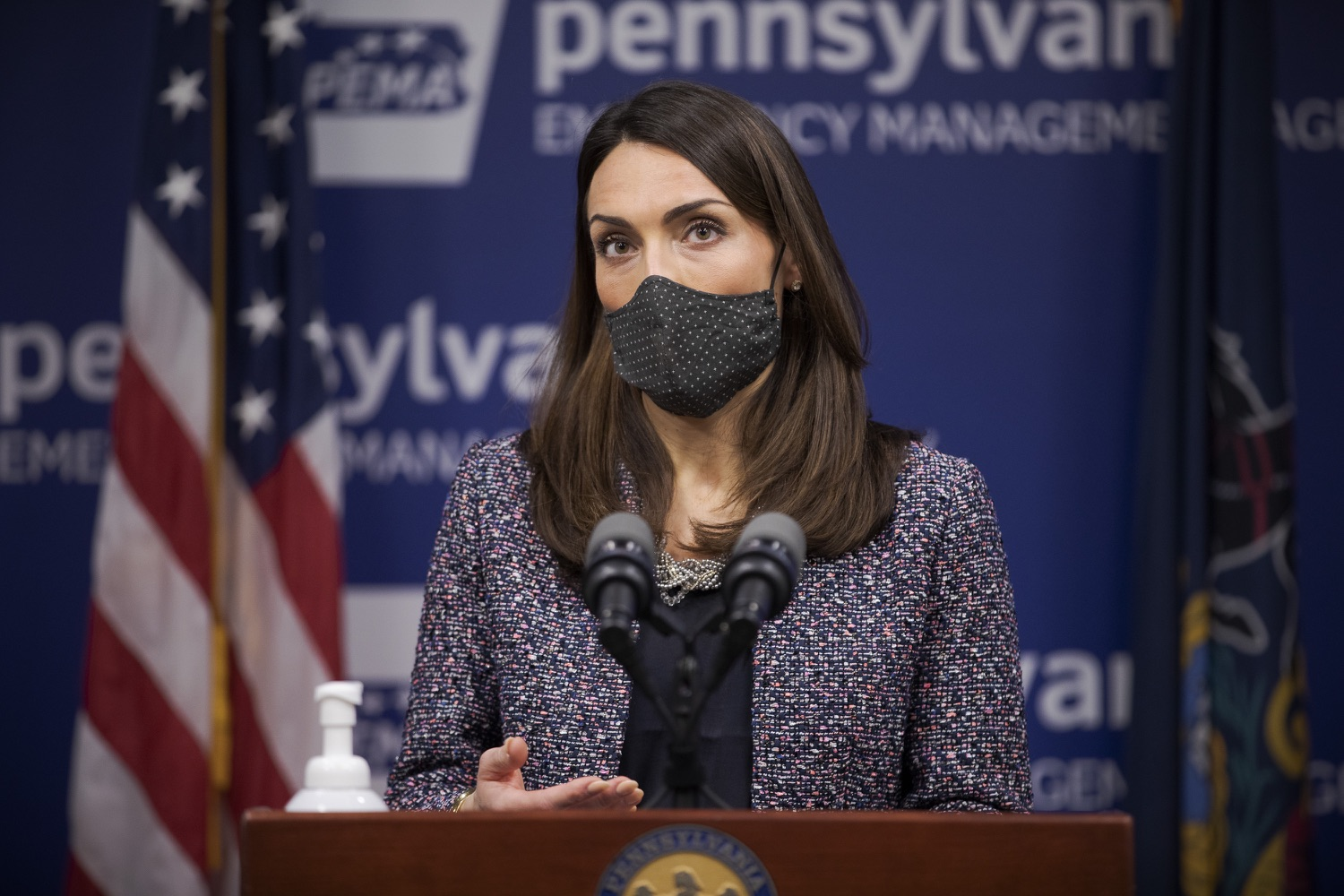 Pennsylvania Acting Secretary of Health Alison Beam speaks at a virtual press conference on Tuesday, Jan. 26, 2020. (Source: Pa.gov)