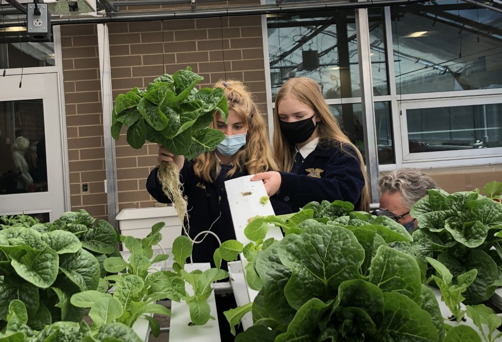 Penn Manor Future Farmers of America students show off hydroponic lettuces they are growing as part of their school curriculum during a visit by state officials on Wednesday, May 12, 2021. (Photo: Emily Ritchey)