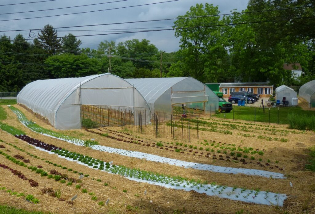 An overview of York Fresh Food Farms' flagship operation on Willis Road in York. (Photo: Tim Stuhldreher)