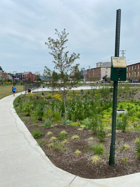 One of Culliton Park's sustianable storm water runoff areas. (Photo: Olivia Smucker)
