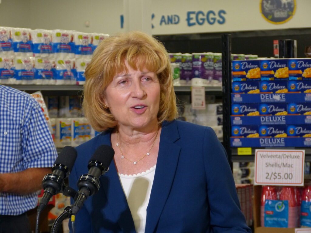 State Sen. Judy Schwank, Democratic chair of the Senate Agriculture and Rural Affairs Committee.